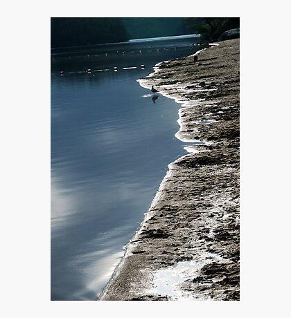 Shore's Edge Photographic Print