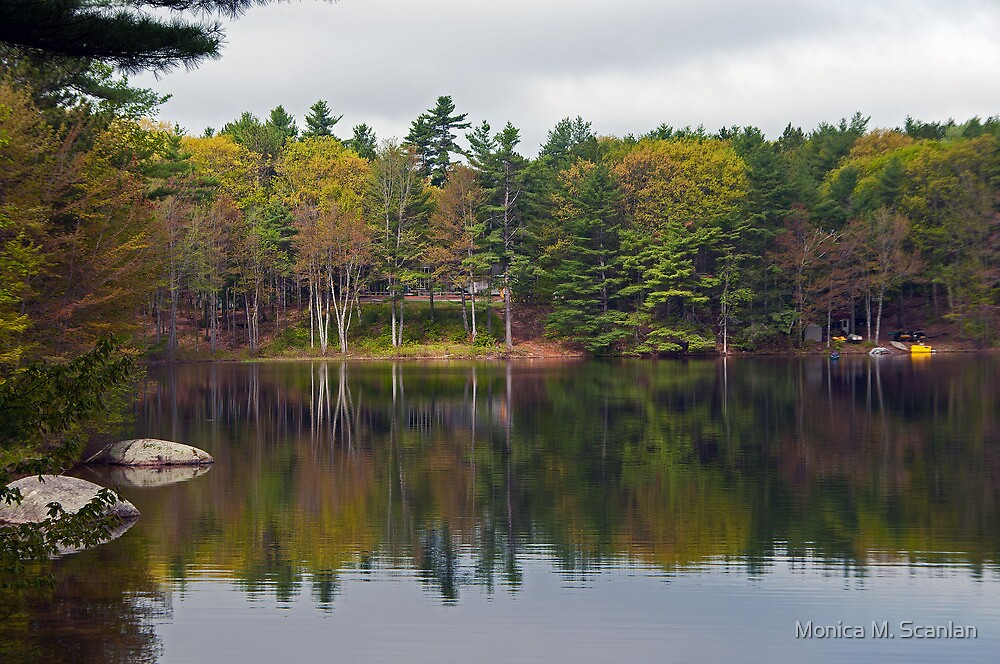 Lake Whittemore by Monica M. Scanlan