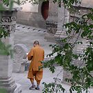 monk walking by Klaus Bohn