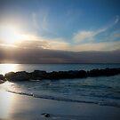 Sun Reflection by Tamara Dandy