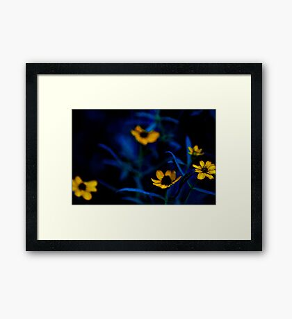 Deep down to my lawn...: On Featured work: Extra-ordinary-photography Group Framed Print