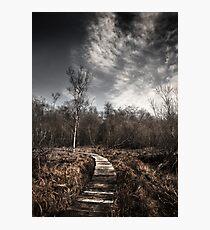 Malham Tarn National Nature Reserve Photographic Print