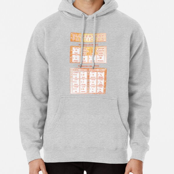 Elementary Particles of the Standard Model Pullover Hoodie