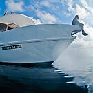 Scouting for divers - Maldives by shellfish