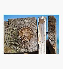Wooden Textures Photographic Print