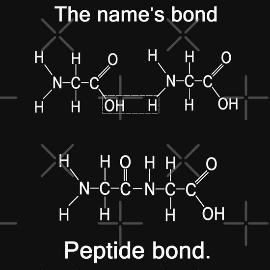 TShirtGifter presents: The name's bond, peptide bond