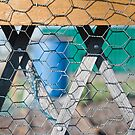Lozenge Fence by Orla Cahill Photography