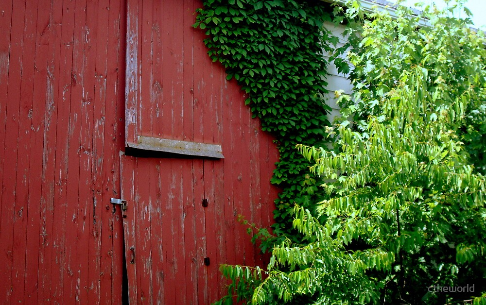 The Old Barn Door^ by ctheworld