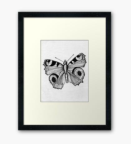 048 - ADULT PEACOCK BUTTERFLY - DAVE EDWARDS - PEN & INK - 1981 Framed Print