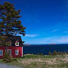 Little Red House in Tors Cove by Stephen Rowsell