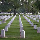 Arlington Cemetery by Eileen Brymer