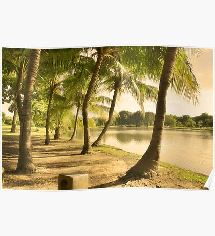 Close to Home - Palm trees lake side Poster