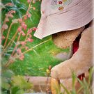 A spot of light gardening by Astrid Ewing Photography