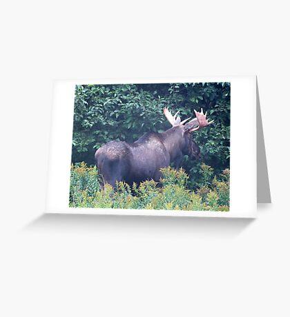Big Boy Greeting Card