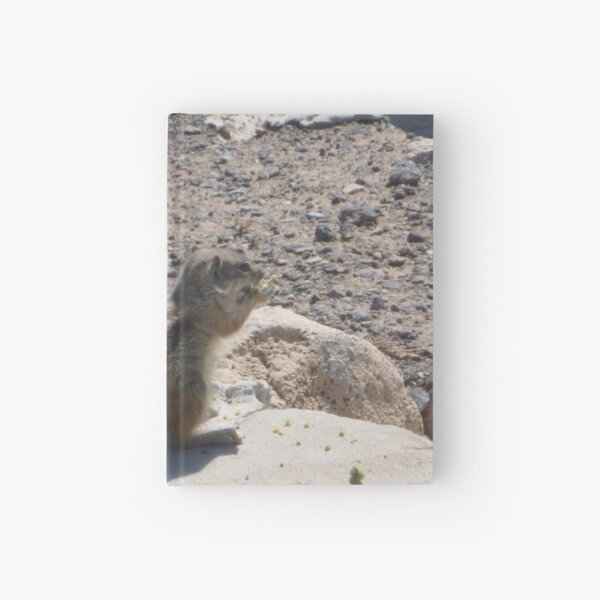 barbaric ground squirrel Hardcover Journal