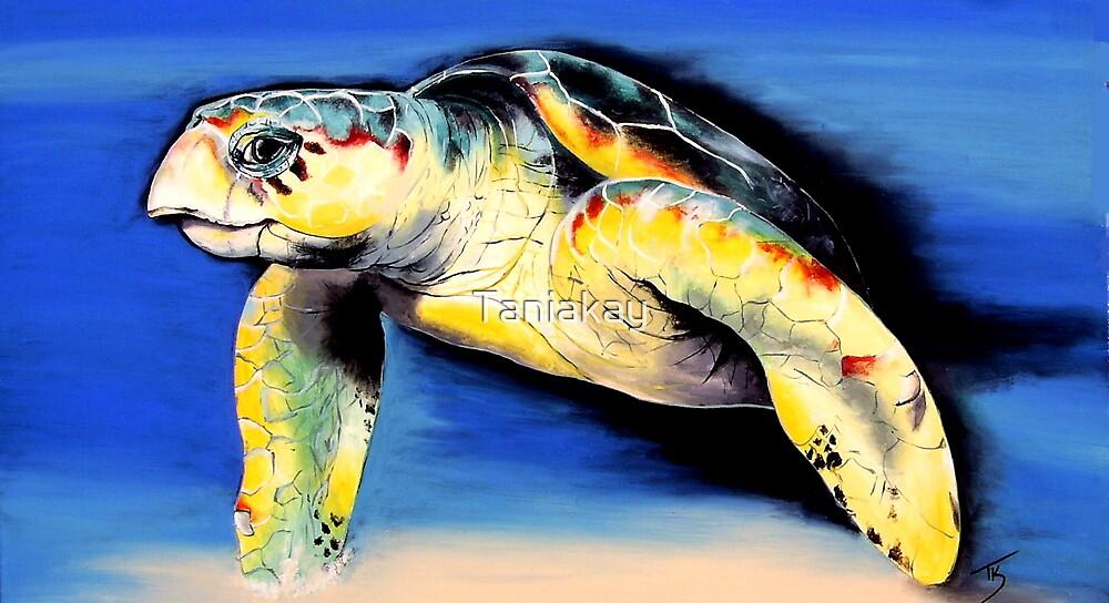 """Turtle"" by Taniakay"