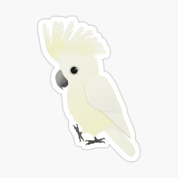 White umbrella cockatoo Sticker