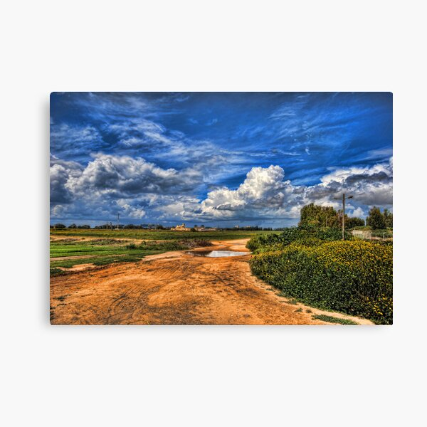 End of The Spring  Canvas Print