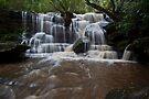 Lower Somersby Falls by John Morton