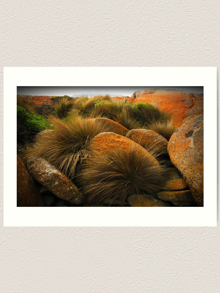 Alternate view of North-East Point - Flinders Island, Tasmania Art Print