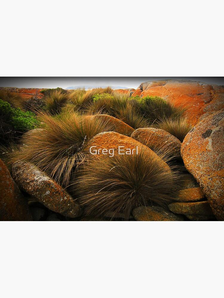 North-East Point - Flinders Island, Tasmania by GregEarl
