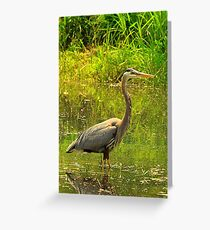 Crane Greeting Card