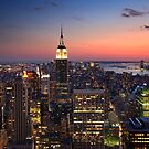 The Big Apple by Cameron B