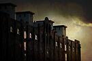 asylum by Anthony Mancuso