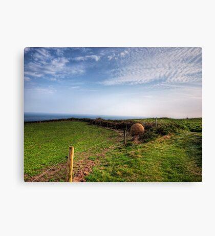 "An ""Alderney Stone"" - Andy Goldsworthy Canvas Print"