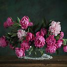 pink peony by dagmar luhring