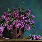 lilac by dagmar luhring