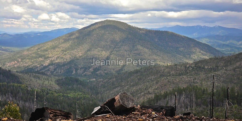 8 dollar mountain by Jeannie Peters