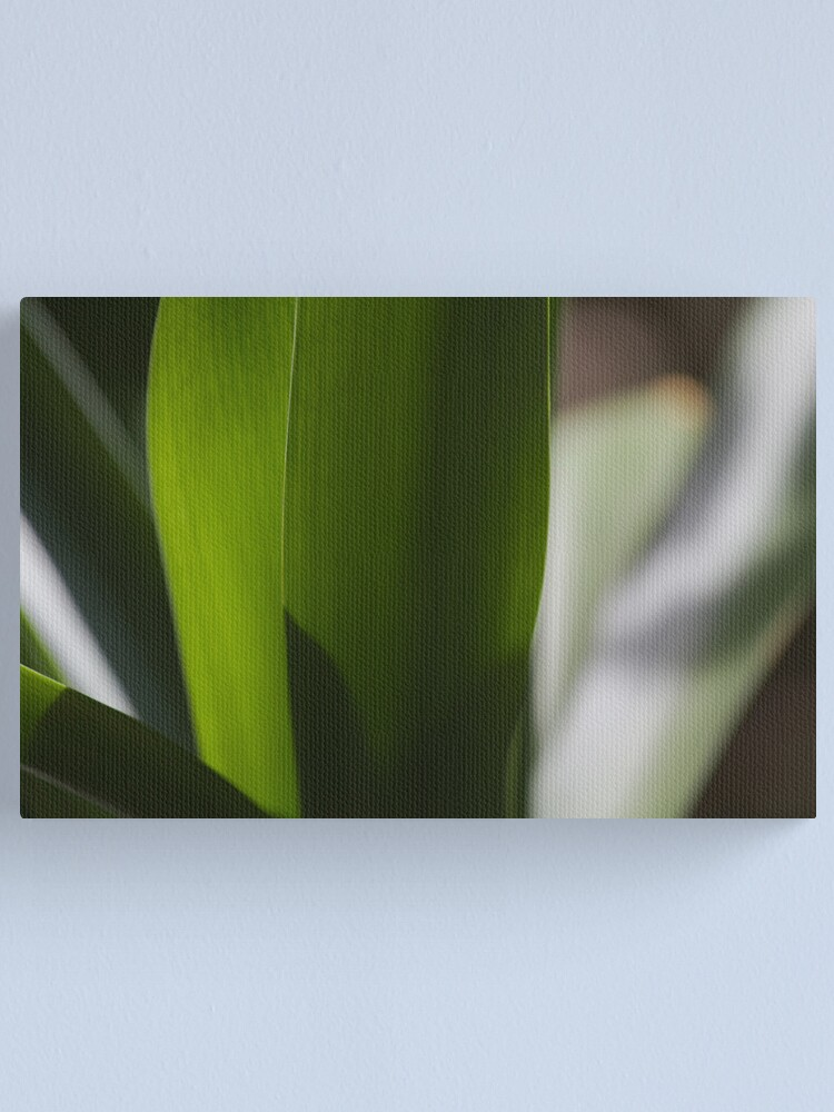 Alternate view of Leaves Canvas Print