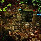 Namsan Grotto by Barbara  Brown