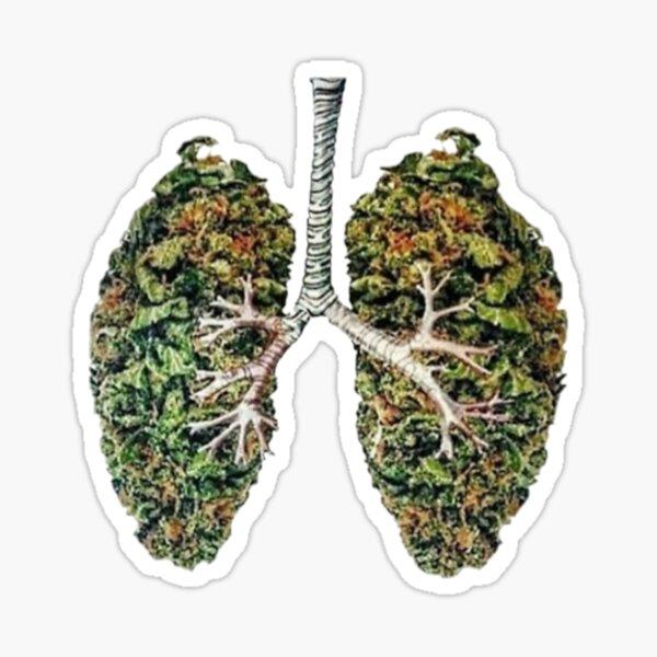 Weed Lungs merchandise Sticker