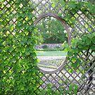 Secret Garden 2 by Hank Eder