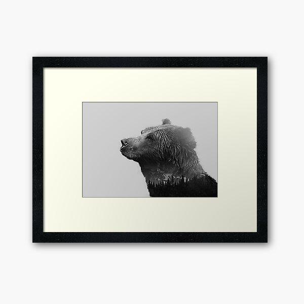 Canadian bear Framed Art Print
