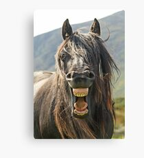 """The """"Laughing"""" Horse Canvas Print"""