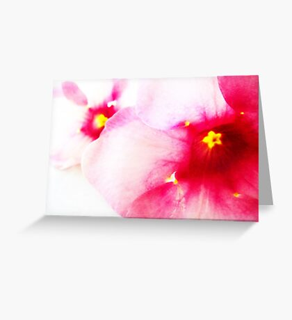 Purple Buttercup Greeting Card