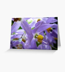 purplelove Greeting Card