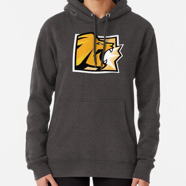R6 - LION Pullover Hoodie