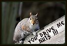 """""""You Drive Me Nuts !!!"""" by Gail Jones"""