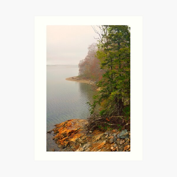 Coastline in Fog, Blue Hill Peninsula, Maine Art Print