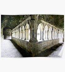 The Cloister - Askeaton Friary Poster