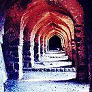 old fort by amar singh