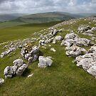 Wharfedale Limestone by SteveMG