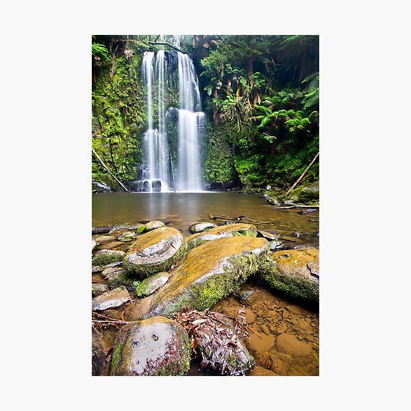 Beauchamp Falls, Otway N.P Photographic Print