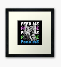 Feed me kitten very hungry asking for food Framed Print