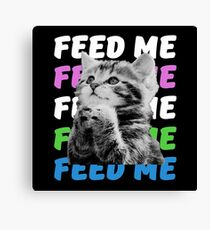 Feed me kitten very hungry asking for food Canvas Print