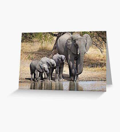 Elephant Mom and Babies Greeting Card